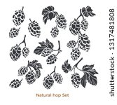 vector nature set of hop.... | Shutterstock .eps vector #1317481808