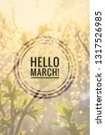 greeting card hello march...   Shutterstock . vector #1317526985