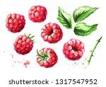 Ripe Raspberries And Green...