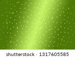 beautiful lime abstract... | Shutterstock . vector #1317605585