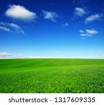 field and blue sky with white...   Shutterstock . vector #1317609335