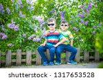 portrait of two little brothers ... | Shutterstock . vector #1317653528