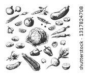 hand drawn vegetables. corn... | Shutterstock .eps vector #1317824708