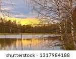 trees by the lake in early... | Shutterstock . vector #1317984188