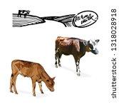 cow  calf  chickens  farm...   Shutterstock .eps vector #1318028918