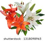 illustration with lily flowers... | Shutterstock .eps vector #1318098965