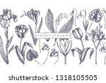 spring flowers background.... | Shutterstock .eps vector #1318105505