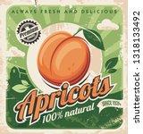 Apricots Vintage Poster Design. ...