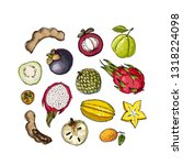 mangosteen  pitaya  guava ... | Shutterstock .eps vector #1318224098
