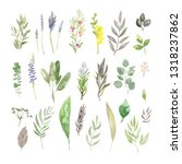 a collection of hand painted... | Shutterstock . vector #1318237862