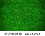 Green Meadow Grass Field For...