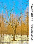 trees stand in the snow in... | Shutterstock . vector #1318528952