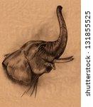 Elephant Head Pencil Drawing  ...