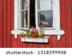 Flowers Outside A Rustic White...