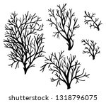 sea corals and seaweed black... | Shutterstock .eps vector #1318796075