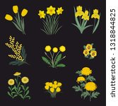 collection of yellow flowers on ... | Shutterstock .eps vector #1318844825