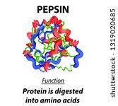 the molecular structural... | Shutterstock .eps vector #1319020685