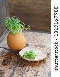 cress salad greens in egg shell.... | Shutterstock . vector #1319167988
