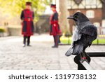 raven perched on a railing at... | Shutterstock . vector #1319738132