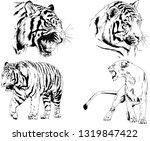 vector drawings sketches... | Shutterstock .eps vector #1319847422