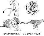 vector drawings sketches... | Shutterstock .eps vector #1319847425
