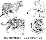 vector drawings sketches... | Shutterstock .eps vector #1319847428
