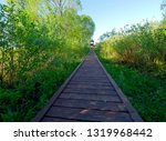 biebrza national park  ...   Shutterstock . vector #1319968442