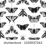 vintage butterflies seamless... | Shutterstock .eps vector #1320037262