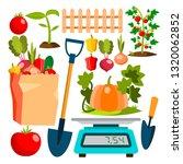 ecological vegetables gardening ...   Shutterstock .eps vector #1320062852