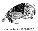 beagle is biting softly on it's ... | Shutterstock .eps vector #132010226