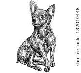 the vector of chihuahua | Shutterstock .eps vector #132010448