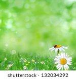 summer background | Shutterstock . vector #132034292