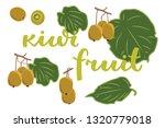 vector illustration of kiwi... | Shutterstock .eps vector #1320779018