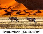 oryx antelope and orange dunes... | Shutterstock . vector #1320821885