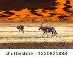 oryx antelope and orange dunes... | Shutterstock . vector #1320821888