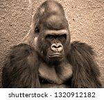 hand of gorillas are ground... | Shutterstock . vector #1320912182