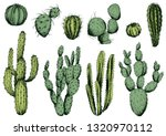 Vector Set Of Green Cactus...
