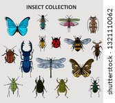 hand drawn insect bugs... | Shutterstock .eps vector #1321110062