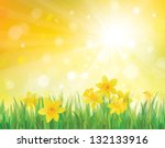 Vector Of Daffodil Flowers On...