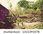 beng mealea temple  ancient...   Shutterstock . vector #1321391078