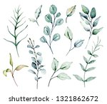 watercolor green leaves set.... | Shutterstock . vector #1321862672