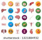 internal organs of a human... | Shutterstock .eps vector #1321884932