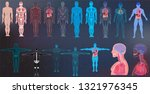 x ray body collections in... | Shutterstock .eps vector #1321976345