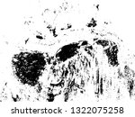 grunge texture   abstract stock ... | Shutterstock .eps vector #1322075258