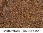 Seaweed Sargassum Seeds Texture
