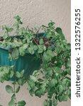 fresh spearmint vase in modern... | Shutterstock . vector #1322576255