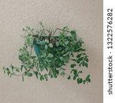 fresh spearmint vase in modern... | Shutterstock . vector #1322576282