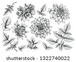 sketch floral botany collection.... | Shutterstock .eps vector #1322740022