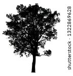 silhouette tree isolated on a... | Shutterstock . vector #1322869628
