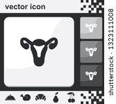 female uterus flat set of... | Shutterstock .eps vector #1323111008